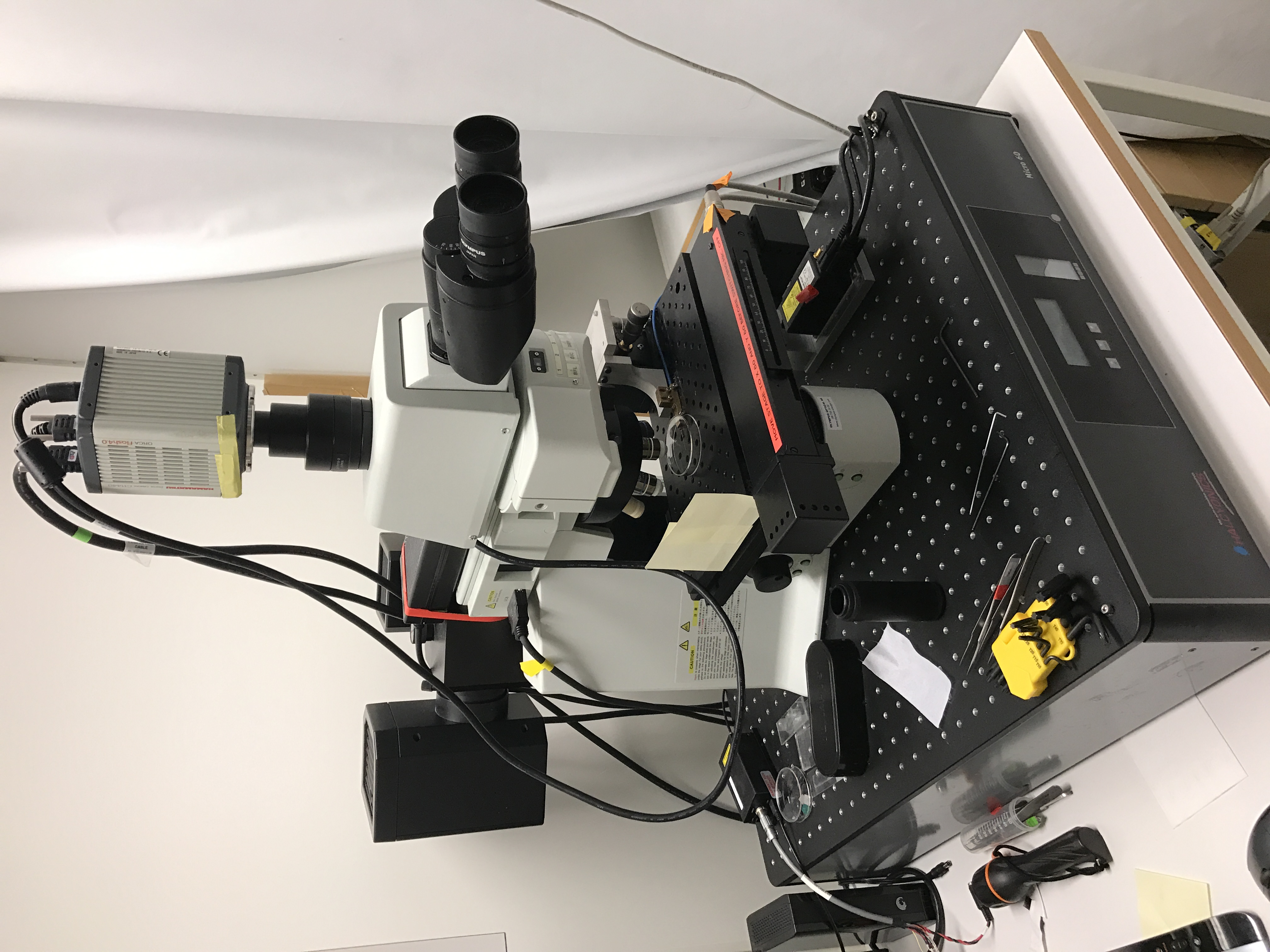 Picture of Microscope Olympus